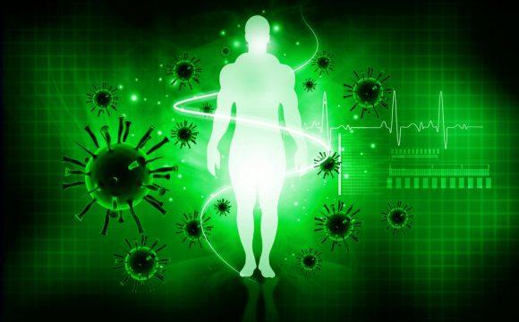חיזוק מערכת החיסון ובריאות הגוף
